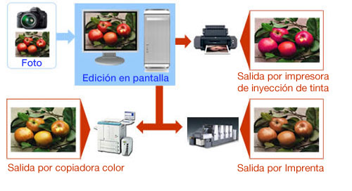 gestion color eizo
