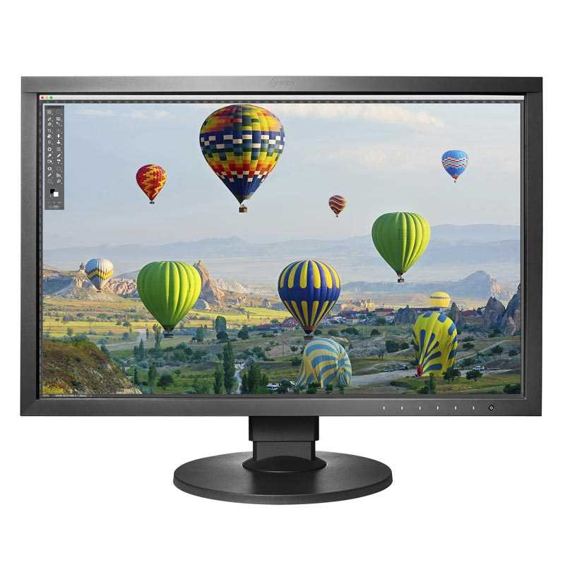 Monitor Eizo ColorEdge CS2410 sRGB